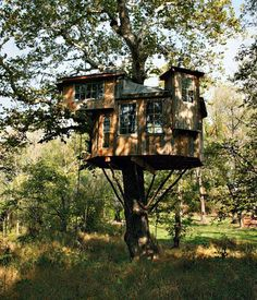 Biggest Treehouse In The World 2013 world's largest treehouse for le monde | architecture | pinterest