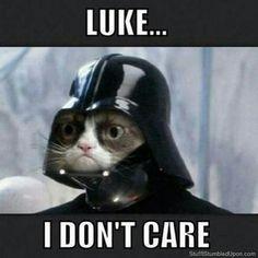 I don't care / Grumpy Cat as Darth Vader #StarWars