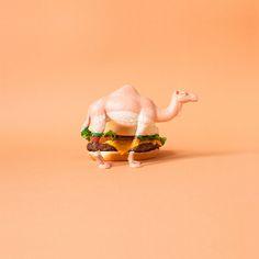 Camelflage: Burger bu Dschwen