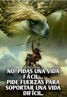 Funny Spanish Memes, Spanish Humor, Funny Cat Memes, Native American Drawing, Spanish Inspirational Quotes, Bien Dit, Intelligence Quotes, Simple Quotes, Motivational Phrases