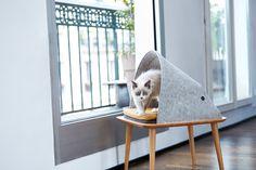 Meyou, una Casa para Gato con Estilo Contemporáneo