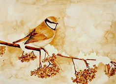 Bird On Branch Coffee Painting Mariana Lazarciuc