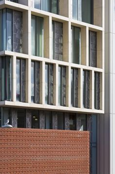 University of Brighton by Proctor & Matthews Architects Building Facade, Brighton, Multi Story Building, University, Architects, Projects, Concept, Education, Log Projects