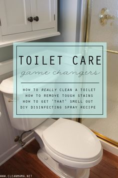 """A while back, I polled my readers and asked what their cleaning conundrums were. I received an outpouring of questions on a variety of topics and have enjoyed tackling these issues in prior """"What's the Best?"""" posts. Today, I am taking on a topic that many of you have issues with: TOILET CARE. How to... (read more...)"""