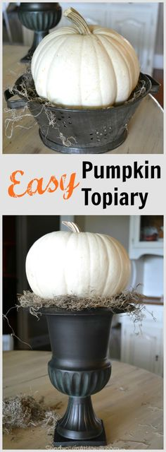 Easy Pumpkin Topiary- Just a few simple items and you can make an elegant fall topiary! -from Sondra Lyn at Home