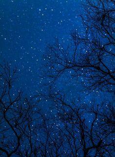 Stars Sky Full Of Stars, Stars At Night, Starry Night Sky, Night Skies, Love Blue, Blue Aesthetic, Pretty Pictures, Midnight Blue, Beautiful World
