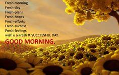Sun flowery good morning