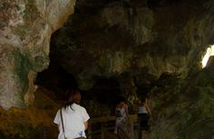 Enjoy lunch at Lake Cave Tearooms and visit the Caveworks Interpretive Centre (time permitting). Next we head out to explore Mammoth Cave on a guided tour.https://www.lokshatours.com/margaret-river-and-swan-valley-day-tours/