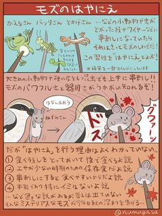 埋め込み Animals And Pets, Funny Animals, Kemono Friends, Animal Facts, Animal Drawings, Mammals, Animal Pictures, Manga Drawing, Anime Art