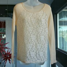 Cream shirt with sheer lace front. Lovely cream long sleeve top (sweatshirt material) with sheer white lacey front. Scoop neck.  Pair with jeans boots and your favorite scarf and you are ready for the day!  Brand new. Size S. (Size tag not attached) YA Tops