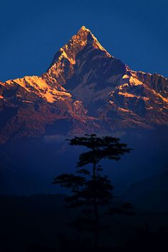 Machapuchare at dawn, Nepal Himalaya (Nepal, 1977) - Galen Rowell. Awesome Photographer by mari