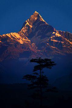 Machapuchare at dawn, Nepal Himalaya (Nepal, 1977) - Galen Rowell. Awesome Photographer