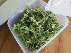 If dandelion leaves are dried carefully in a dehydrator they retain their colour and medicinal properties.