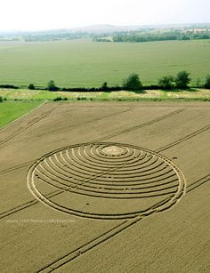 Crop Circle at Woodway Bridge, nr All Cannings, Wiltshire. Reported 24th August 2016