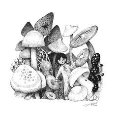 Mushroom Forest by Sungwon