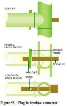 #Bamboo