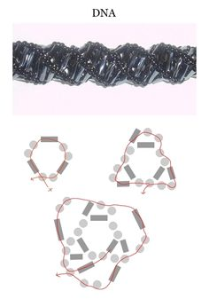 """Seed bead jewelry """"DNA"""" spiral ~ Seed Bead Tutorials Discovred by : Linda Linebaugh - Seed Bead Tutorials, Seed Bead Patterns, Beaded Jewelry Patterns, Bracelet Patterns, Beading Patterns, Beading Tutorials, Seed Bead Bracelets, Seed Bead Jewelry, Ideas Joyería"""