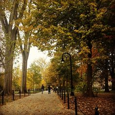 Fall at Penn State