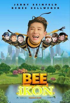 Chanwoo Ikon, Hanbin, Ikon Leader, Find Memes, Ikon Wallpaper, Renee Zellweger, Kpop, Kyungsoo, K Idols