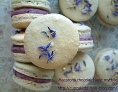 Macarons chocolat blanc myrtille-5