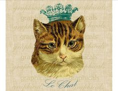 Blue eyed cat instant clip art French Le Chat crown Digital download for fabric transfer decoupage p