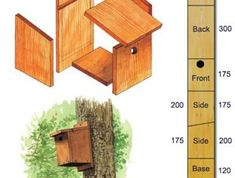 Nichoir pour mésanges / British Trust for Ornithology - DIY instructions for small hole nest boxes ideal for blue tits and great tits Bird Nesting Box, Nesting Boxes, Bird House Plans, Bird House Kits, Bird House Feeder, Bird Feeders, British Wildlife, Bird Boxes, Kit Homes