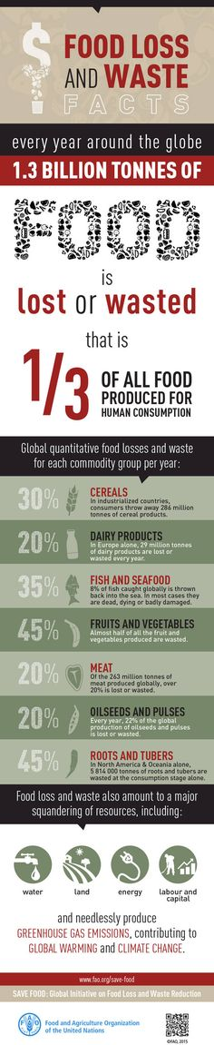 #Infographic - Food loss and waste facts