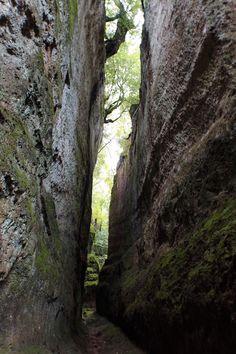 La Via Cava di San Sebastiano