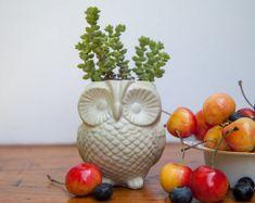 Owl Planter - Cast Cement, concrete handmade garden decor, Halloween gift