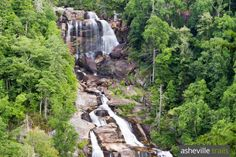 North Carolina waterfalls: our top ten favorite hikes near Asheville