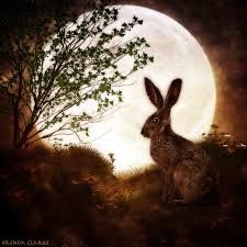 「Moon hare」の画像検索結果
