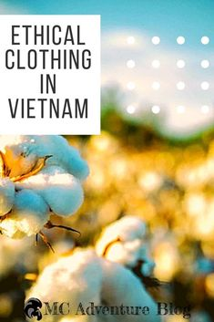 Vietnam is a world leader in the textile and tailoring industries. But fast fashion is killing the world a sweat shop at a time. Here is our guide to finding ethical clothing brands so that you can look great and change the world at the same time. Clothing Swap, Ethical Clothing, Vietnam Travel, Asia Travel, Second Hand Clothing Stores, Beautiful Vietnam, Fast Fashion Brands, Retail Therapy, Amazing Destinations