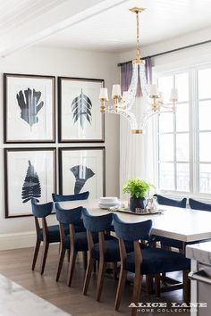 Chic dining room boasts a white beadboard ceiling accented with a crystal and brass chandelier, Large Crystal Cube Chandelier, illuminating a white dining table lined with navy blue velvet dining chairs placed before windows dressed in white curtains with purple banding.