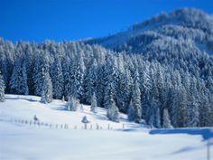 Salzburger Land, Russbach am Pass Gschütt. #winterimpressionen Hallstatt, Austria, Snow, Outdoor, Mountains, Hiking, Outdoors, Outdoor Games, Outdoor Life
