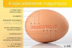 Most megtudhatja, hogy mit jelent a számsor a tojásokon