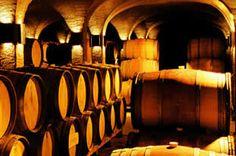Wine Portfolio | Rustenberg WinesRustenberg Wines Cape Town, Farms, Wines, South Africa, Homesteads