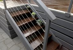 Neutral Steps - Transform the veranda stairs with Ironstone, wire rails and sun loving plants