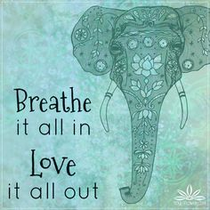 Breathe it all in. Love it all out! <3 #elephant #quote