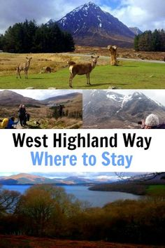 West Highland Way, Scotland Accomdation - Where to Stay