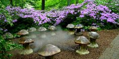Fairy Ring at Winterthur. Designed by W. Gary Smith