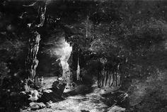 Mağara Albino - cemil batur gökçeer
