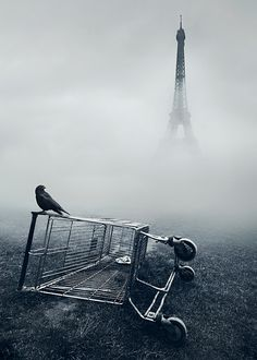 Pure Inspiration | Photography of Mikko Lagerstedt