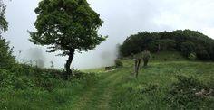Sale la nebbia sulla montagna di Vaie... #myValsusa 01.06.16 #fotodelgiorno di Federico Gioberto
