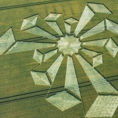 Crop Circle. Crop circles. Círculos en los cultivos