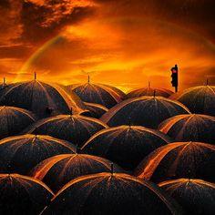 TD Cooper's 2nd Chances: Sea of Umbrellas