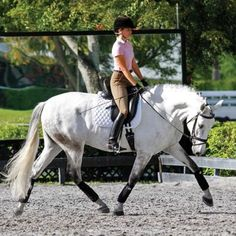 How Do I Weight My Inside Seat Bone Correctly? | Dressage Today