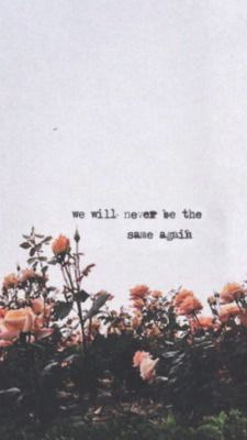 Things we Lost in the Fire ¤ Bastille