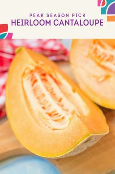 Cantaloupe Season : The cantaloupe plant grows directly on the ground and produces a round shaped and quite large fruit.