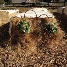 Floral springs Florals, Wedding Flowers, Wreaths, Decor, Floral, Decoration, Door Wreaths, Flowers, Deco Mesh Wreaths