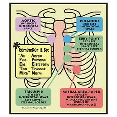 Another heart auscultation mnemonic (with position details)